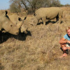 Rhino Wars - solution for South Africa