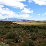 Fracking in the Karoo - Accountability