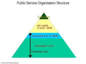 PSO_Structure